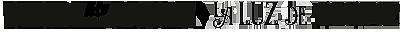 La luz de Bertiz / Bertizko argia Logo
